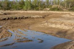 04-Excavación del mosaico de medios húmedos