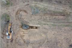 Plantaciones en la antigua chopera