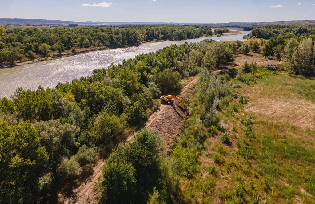 Avanza la restauración fluvial del Ebro en el paraje de La Nava (Alfaro, La Rioja)