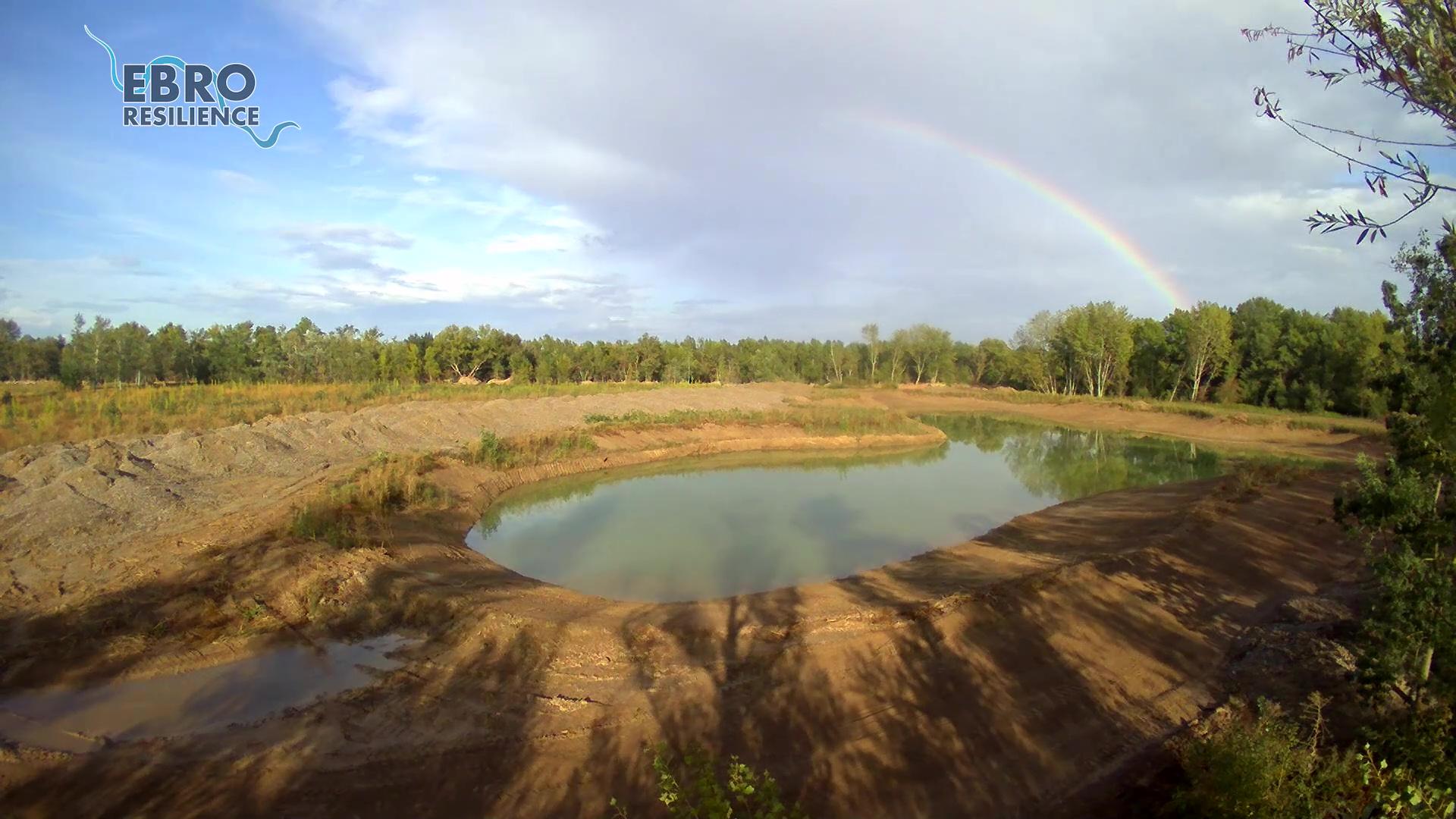 El nacimiento de un humedal en el paraje de La Nava, en Alfaro