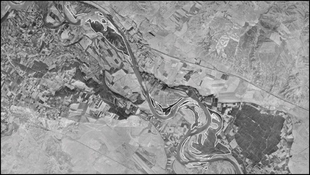Figura 7. Cartografía de las zonas vegetadas en la fotografía aérea de 1956 (elaboración propia).