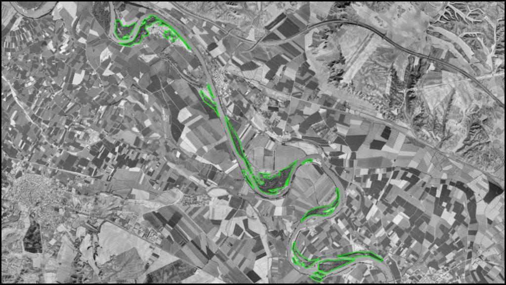 Figura 8. Cartografía de las zonas vegetadas en la fotografía aérea de 1997 (elaboración propia).