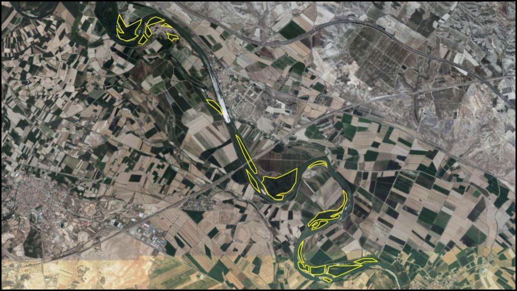 Figura 9. Cartografía de las zonas vegetadas en la fotografía aérea de 2018 (elaboración propia).