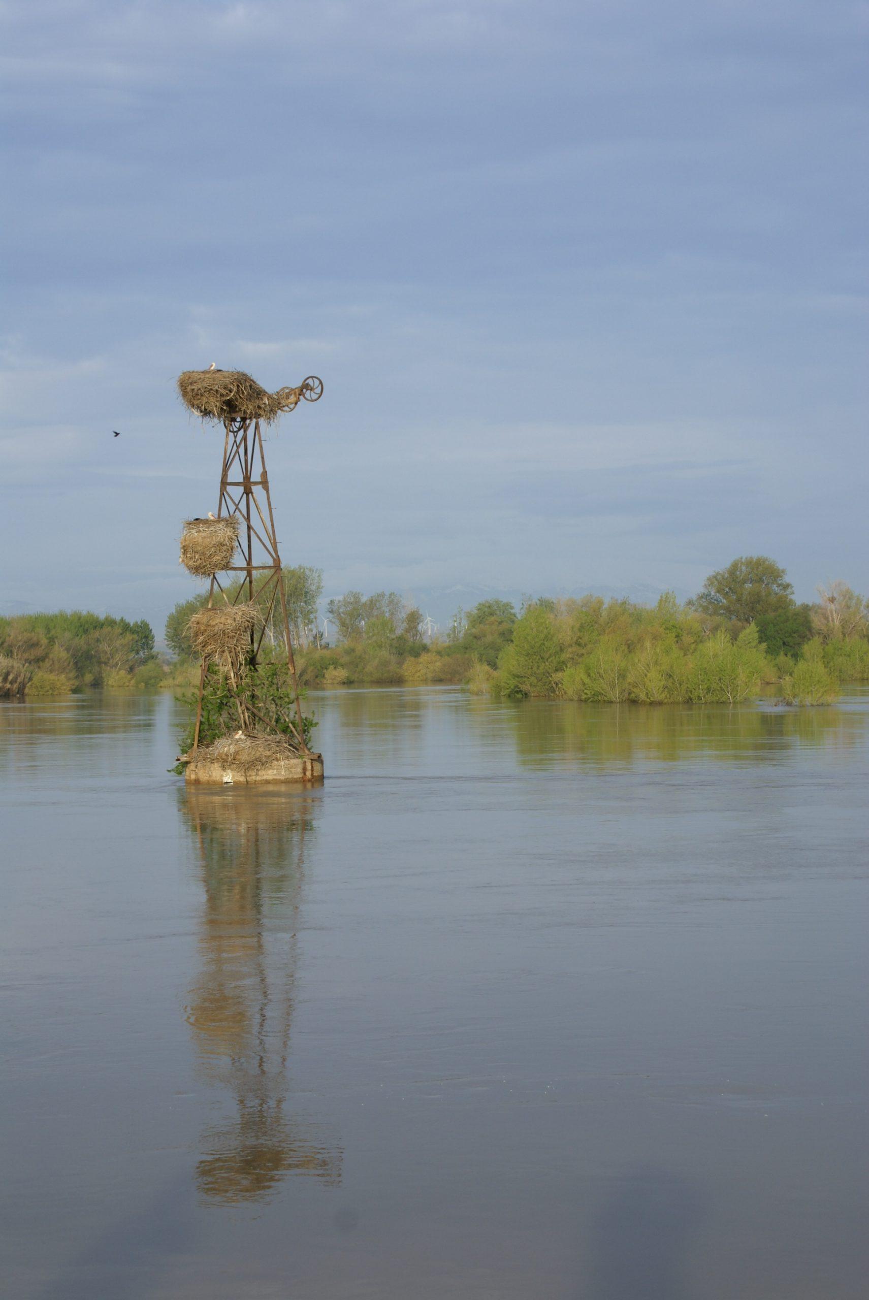 Jornada divulgativa: Magnitud y frecuencia de las crecidas en el Ebro. Estimación, medición y actualización de caudales en el tramo medio