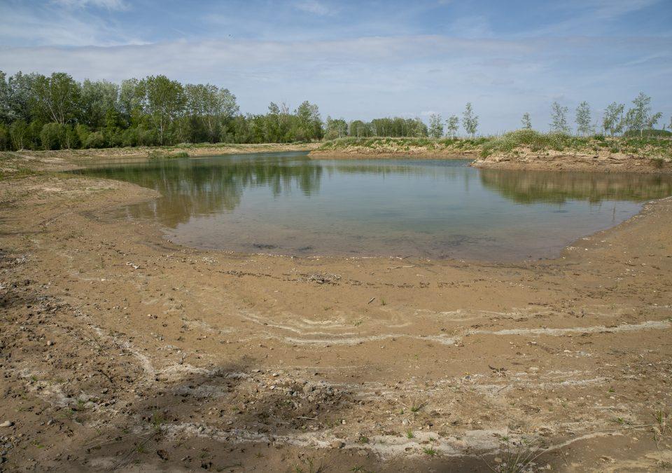Humedal Alfaro